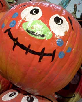 big face pumpkins 大南瓜