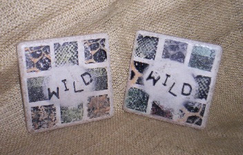 36LM_-_Wild_Coasters_