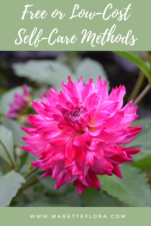 Free or Low-Cost Self-Care Methods - Floradise
