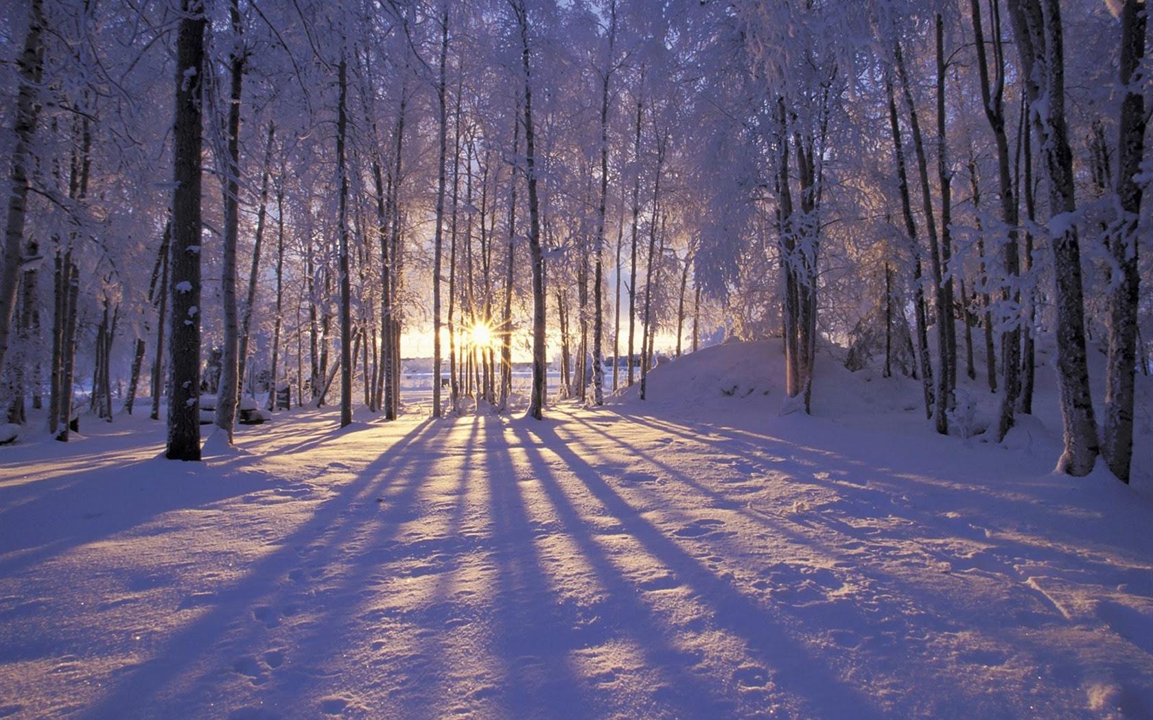 冬の雪の壁紙 3 9 1680x1050 壁紙ダウンロード 冬の雪の壁紙 3