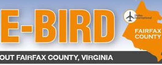 E-Bird: Why Fairfax County has attracted more than 400 international companies