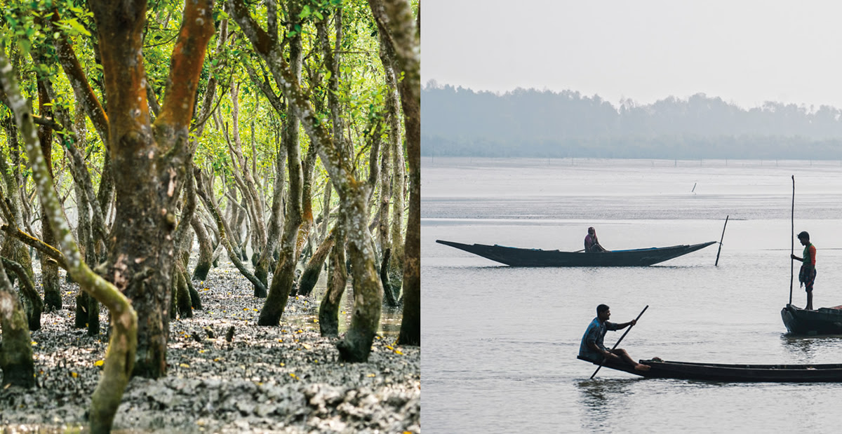 Forest-of-Tides-The-Sundarbans?maxsidesize=2400&width=1200