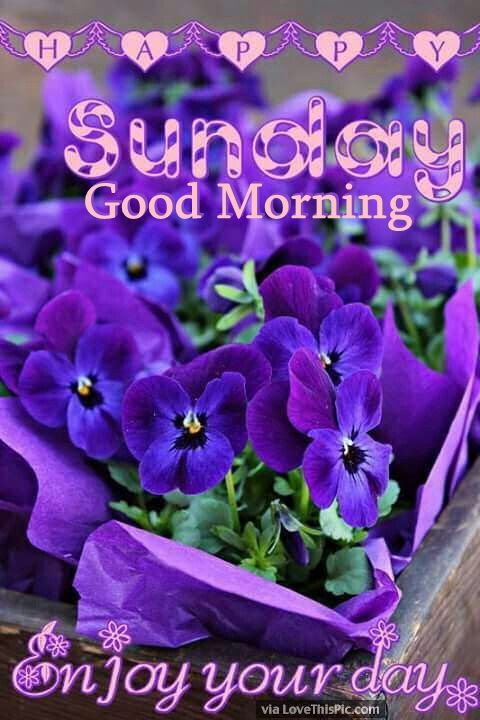 Good Morning Wishes On Sunday Pictures, Images  Page 3