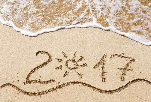 Как встретить новый год 2017?
