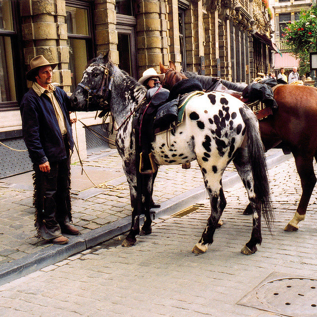 | ♕ | Belgian Cowboy - Holiday in Brussels | by © Peter Gutierrez