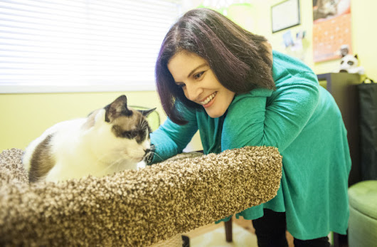 Working in Clark County: Marci Koski, cat behaviorist