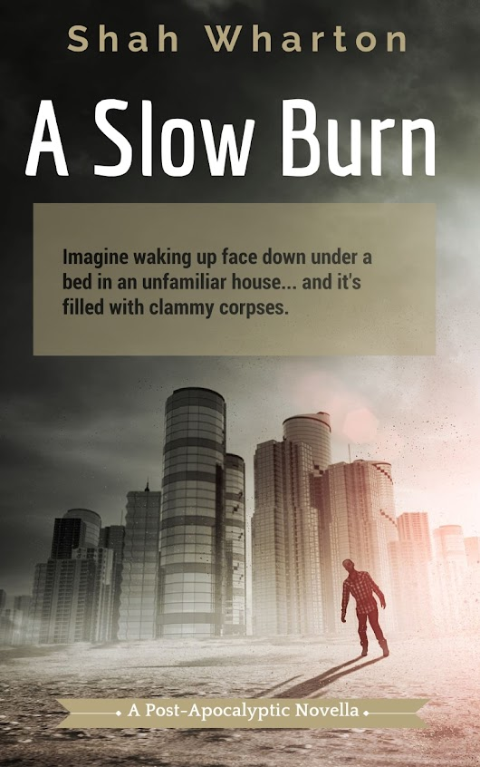 'A Slow Burn' (my post-apocalyptic horror novella) is up on Amazon Kindle for pre-order.