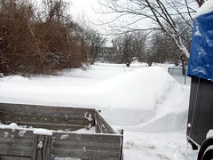 Snow_2311d
