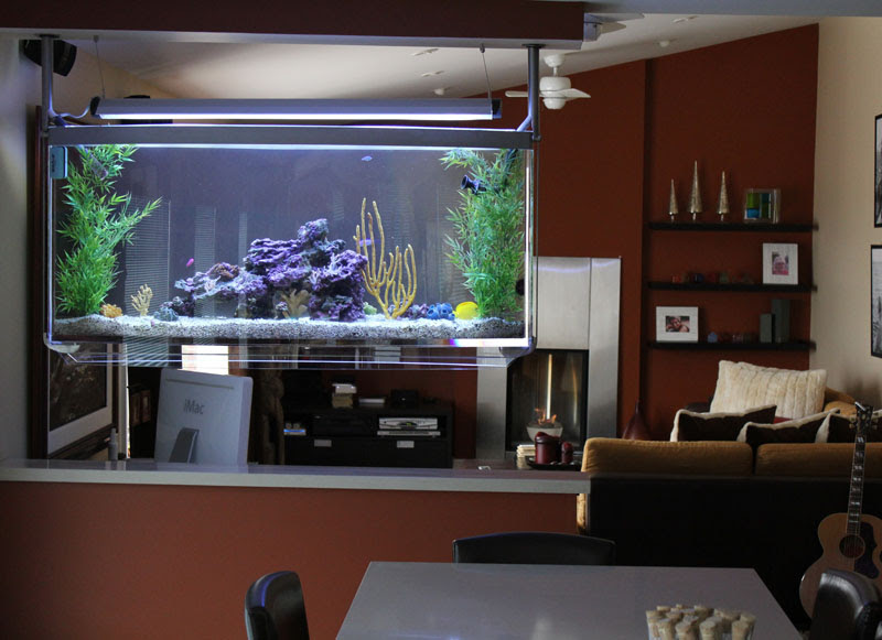Aquarium Effects - Aquarium Design and Installation Services in ...