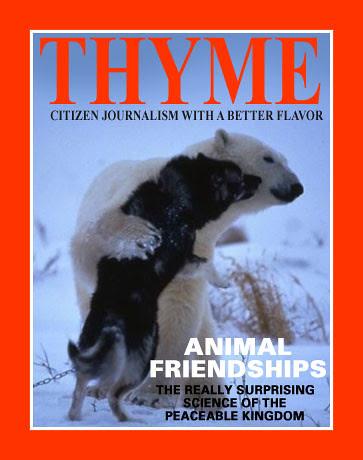 thyme0407