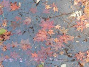 瑞宝寺公園08.JPG
