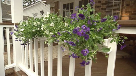 Using Plastic Rain Gutters as Flower Boxes | Today's Homeowner