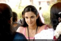 Honey rose photos