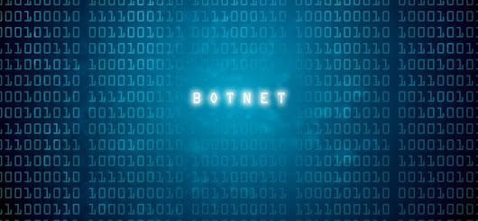 5 Things You Need to Know About Botnets