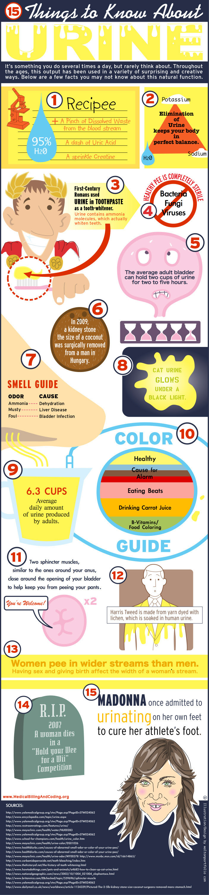 Infographic: 15 Things to Know About Urine
