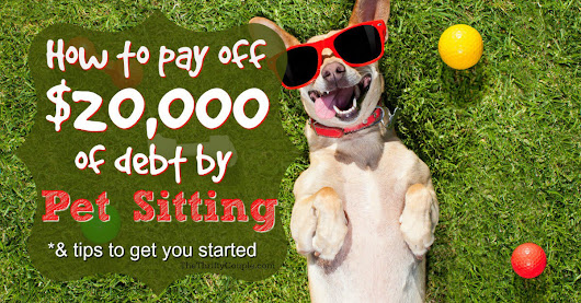 How to Pay Off $20K of Debt By Pet Sitting - The Thrifty Couple