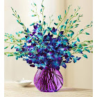 1-800 Flowers 20 Stems Ocean Breeze Orchids 20 Stems with Purple Vase - Flowers