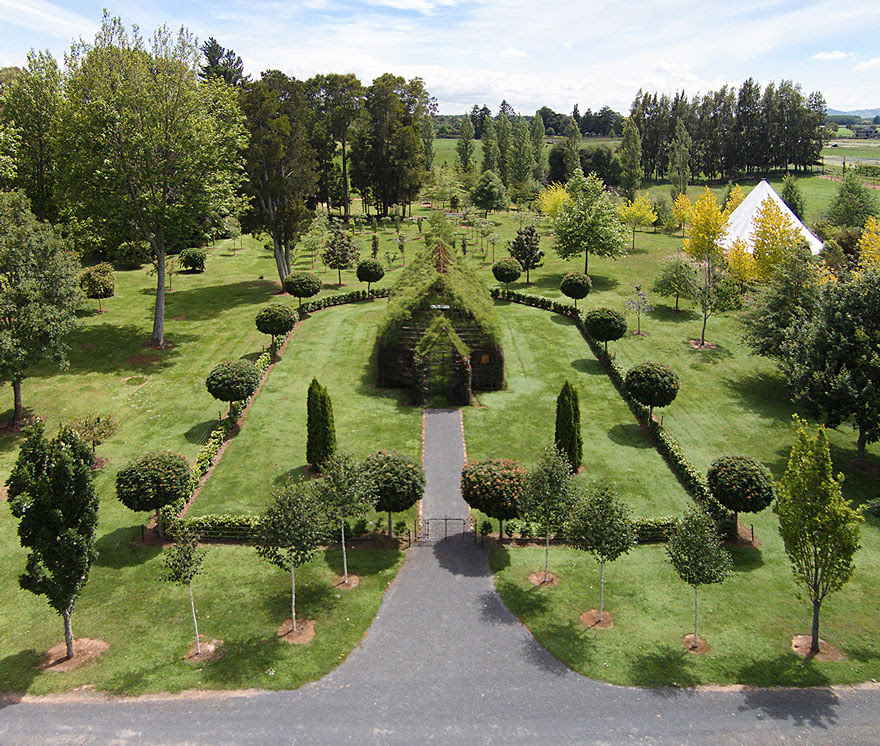 tree-church-nature-installation-barry-cox-new-zealand-3