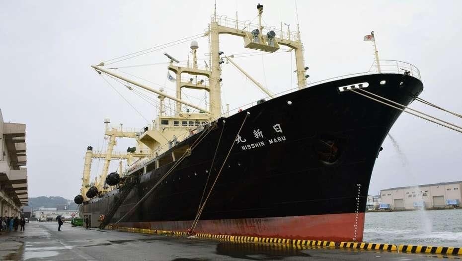 Japón mata 333 ballenas en su polémica campaña anual en la Antártida