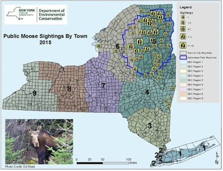 moose map