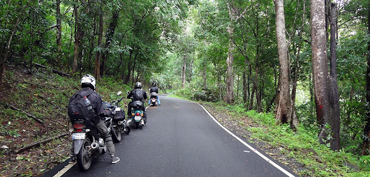 A Ride Through Wilderness: Vattavada to Athirappilly-Valparai (Day 3) - Salmaniac