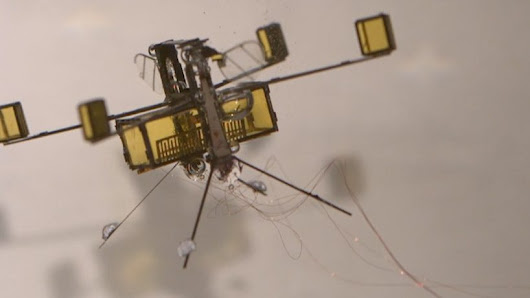 harvard's robobee has two wing-flapping speeds in air and out of water