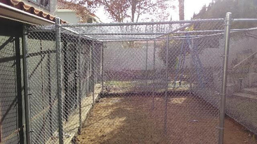 Las Vegas Chain Link Fence Stories: Protecting the Fur Babies