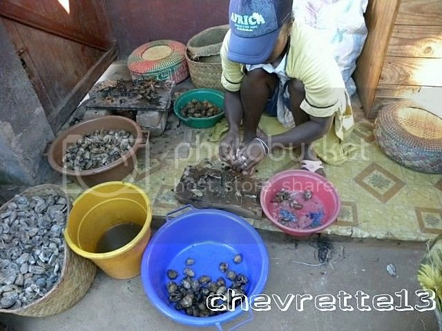 http://i1252.photobucket.com/albums/hh578/chevrette13/Madagascar/DSCN0834640x480_zpsa27430fc.jpg
