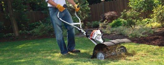 Articles - Weed and Feed Lawn Care