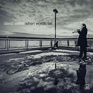David Weiss - When Words Fail cover