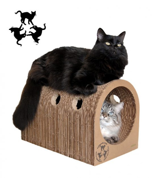 Bonus Giveaway! The Original Catpods™ Cardboard Cat Scratcher and Tunnel