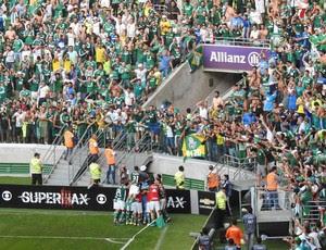 Palmeiras x Botafogo gol Dudu (Foto: Marcos Ribolli)