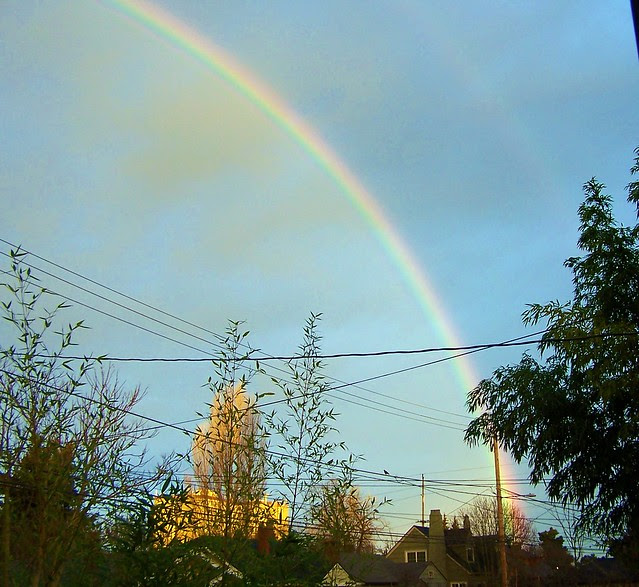 Rainbow outside my house