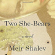 Book review: Two She-Bears by Meir Shalev