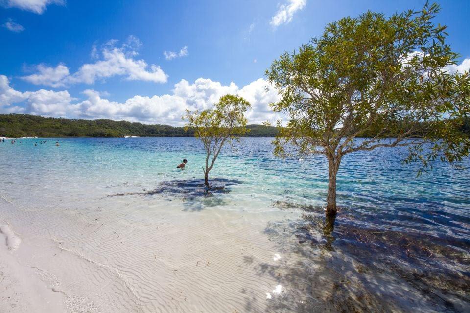 L'île Fraser en Australie
