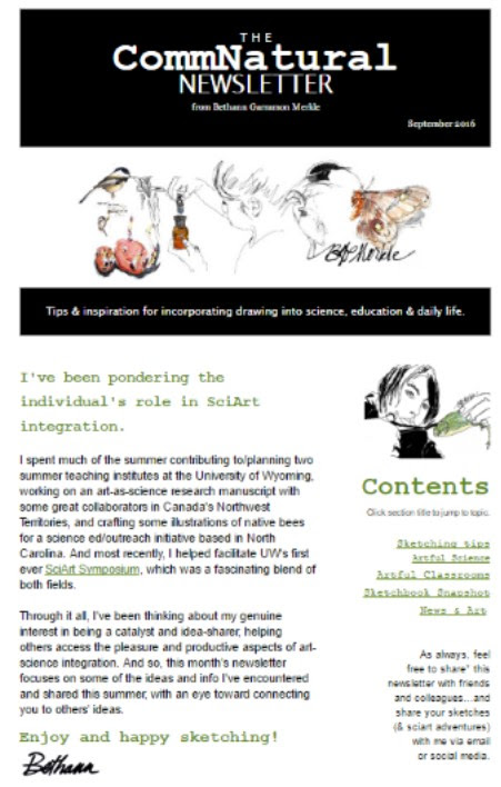 September 2016 Newsletter: Making Connections through SciArt