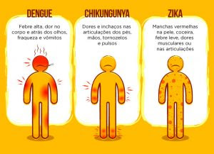 Única forma de evitar as três doenças é combater o mosquito (ilustração: Secretaria de Saúde - BA)