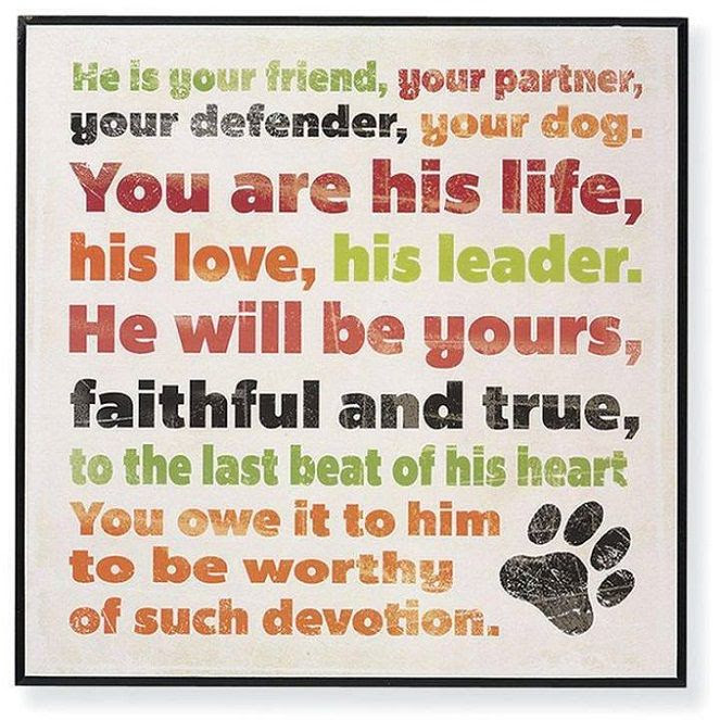Dog Best Friend Quotes Best Friend Quotes