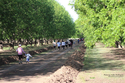 Second Race of the 2016 Orchard Series Fast Approaching - Sahuarita Pecan Festival