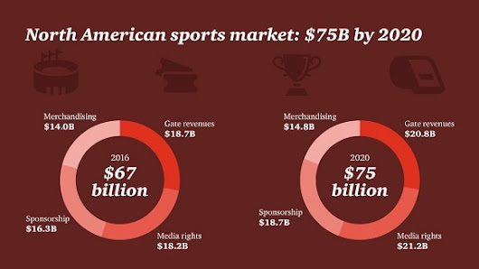 Outlook for the sports market in North America through 2020 | Ekospor