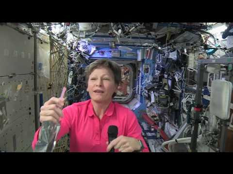 astronaut who stayed in space the longest - photo #25
