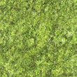 Terrain Textures - Vegetation and Humus (Tiled 512px)
