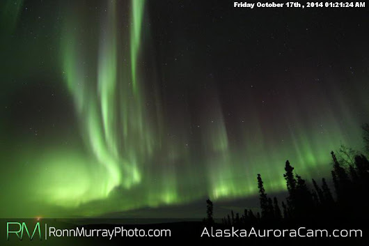 Alaska Aurora Cam - Northern Lights Webcam in Fairbanks, Alaska