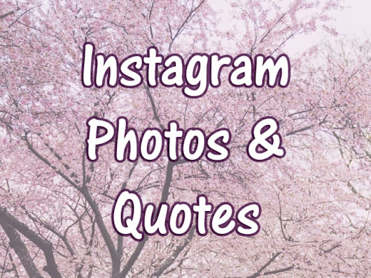 I will create Instagram quotes with photos