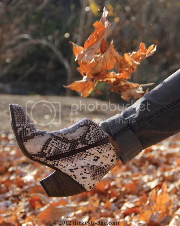 snakeskin ankle boots, python print booties, Los Angeles fashion blogger, southern California fashion blog