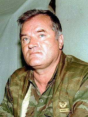 Ratko Mladić, who is in the custody of the Int...