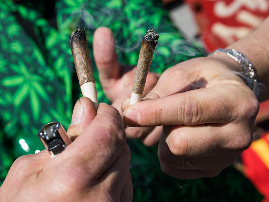 People who smoke weed are richer, more successful and happier, study finds