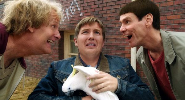 Even Billy the bird-lover is still around to be tormented by Harry Dunne (Jeff Daniels) and Lloyd Christmas (Jim Carrey) in DUMB AND DUMBER TO.