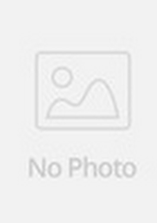 VL-4# 2pc/lot New Nail Art Stamp Stamping Image Template stainless steel Image Konad stamping plates