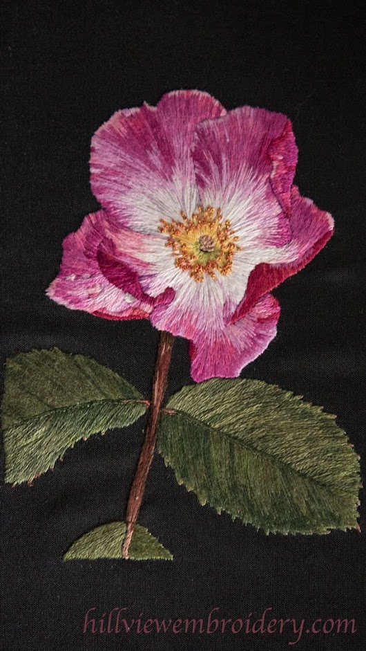 RSN Silk Shading - Assessment and Comments - Hillview Embroidery